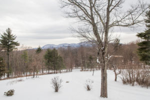 farmhouse, mountain views, views, catskill, durham, ny, new york, for sale, nicole vidor, real estate, realtor