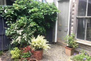 warren street, exterior, garden, back yard, hudson, ny, for rent, rental, nicole vidor, real estate, realty, realtor