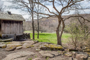 Milkweed Barn, Converted Barn, views, field, trees, stone patio, nicole vidor, real estate, realtor