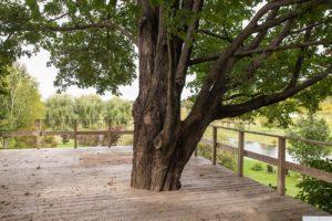 country farmhouse, exterior, views, deck, pond, mature trees, for rent, nicole vidor, real estate, realtor